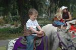 Fynn_horse_2