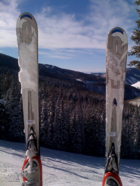 Telecommuting from Colorado